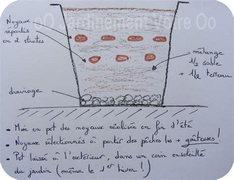 Planter Un Noyau De Peche Plate by Les 7 P 234 Chers Capitaux Jardinement V 244 Tre