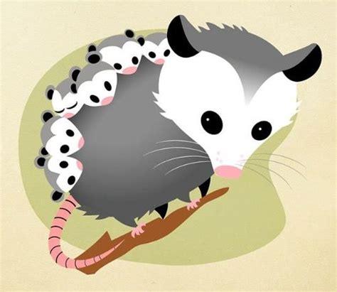 opossum clipart possum clipart clipart for work