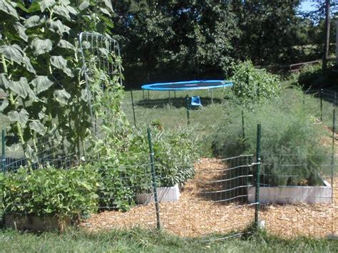 8 Foot Garden Trellis How Does Your Square Foot Garden Grow