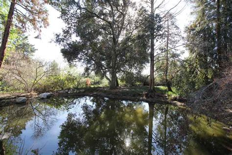 Rancho Santa Botanic Garden These 10 Paranormal Cold Spots Are California S Most Frightening