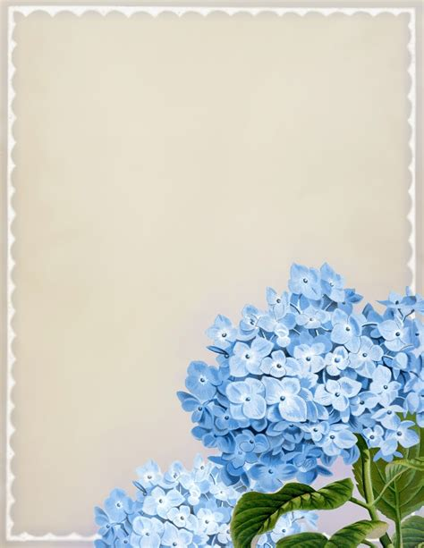 printable pictures of blue flowers quot in full bloom quot vintage blue hydrangea printable