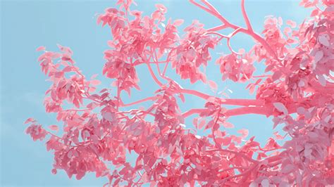 tree pink spring digital art illustration wallpaper