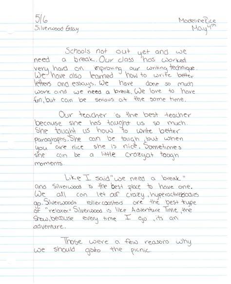 essay on my school in punjabi homework academic writing service