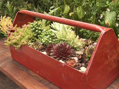 unique planters for succulents 12 unusual and upcycled container gardens diy garden