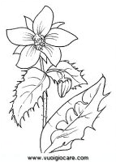 disegnare fiori significato fiori da colorare disegni di fiori da colorare e