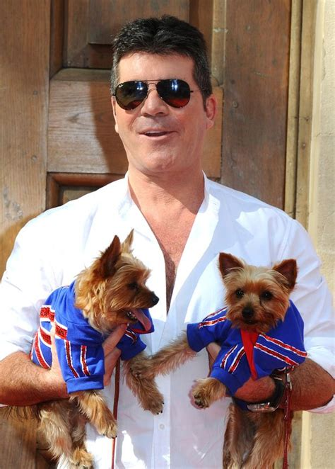 simon cowell dogs simon cowell to send manchester dogs home heroes on and donate 5 figure sum