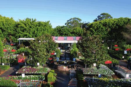 Flower Power Garden Centres Trims Losses With March Flower Power Garden Centres