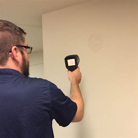 mold inspection mold inspections