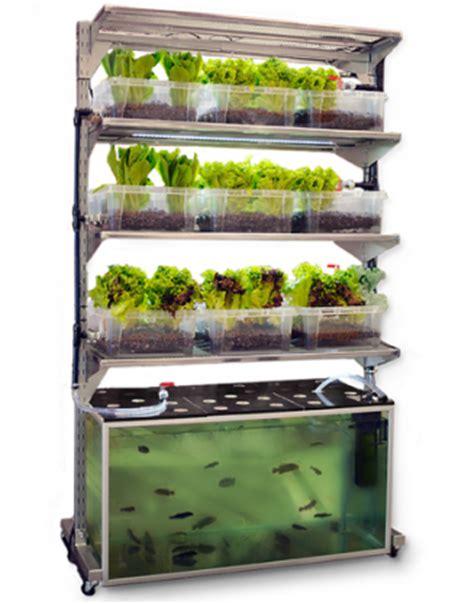 Fish Tank Vegetable Garden Aquacultured Fish Farming From Home Aquariums Fish Tanks