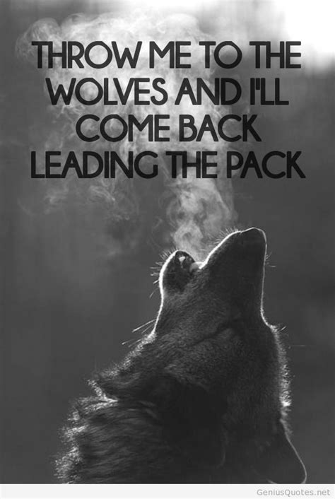 Cool Lone Wolf Quotes. QuotesGram