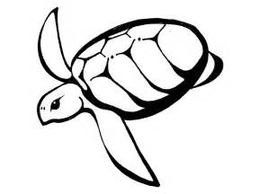 turtles outline turtle outline az coloring pages