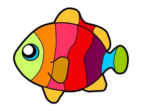 imagenes infantiles gratuitas dibujo de pez payaso pintado por teoalmeyra en dibujos net