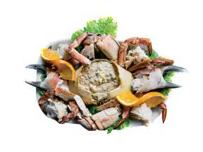 best restaurants in porto best seafood restaurants in porto seafood restaurants in