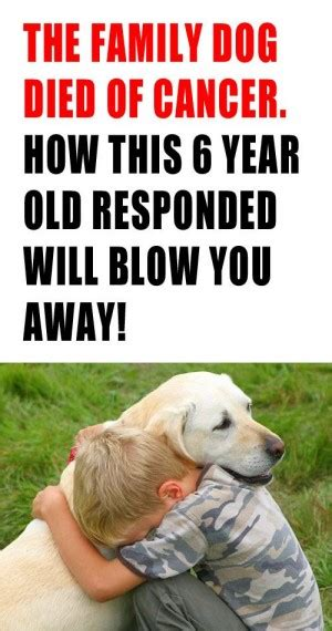 puppy died quotes about your died quotesgram quotes