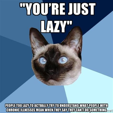 Lazy Cat Meme - lazy cat meme generator image memes at relatably com