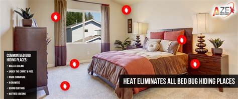 Bed Bug Heat Treatments Azex Pest Solutions Bed How To Get Rid Of Bed Bugs With Heat Treatment Howsto Co