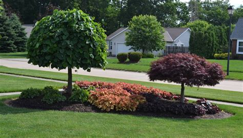 front yard island landscapes landscaping idea for an