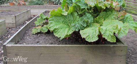 Backyard Flower Gardens Treating Wood For Vegetable Gardens