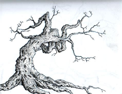 tree by laughingtree on deviantart