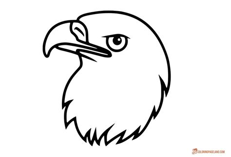 eagle coloring pages  printable black  white pictures