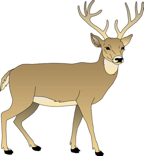 animated deer deer clip at clker vector clip