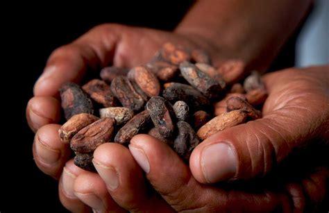Beautiful Christmas Day 2015 #9: Fair-trade-chocolate.jpg