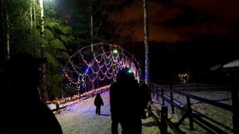 The 8 Best Places To See Christmas Decorations In Alaska Anchorage Zoo Lights