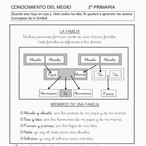 fichas primaria conocimiento medio escuela the world s catalog of ideas