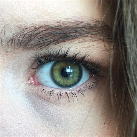 green eye color best 25 green ideas on hazel green