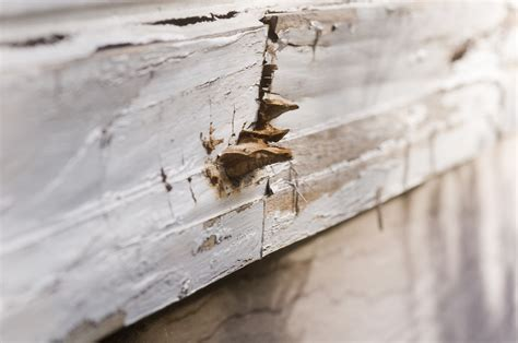 Window Sill Sealant Sealing Can I Repaint And Seal A Window Sill That Has