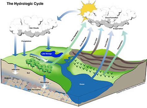 tropical plant biology impact factor marine ecology marinebio org