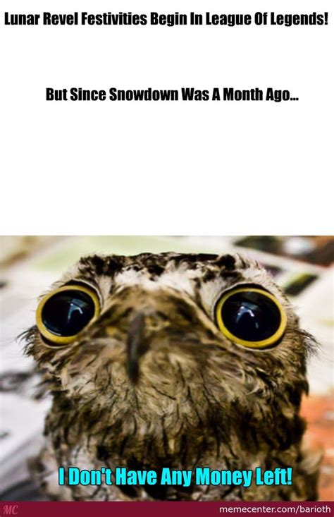 on the nobody knows you re a on the nobody knows you re a potoo by barioth meme center