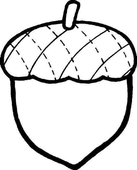 coloring page of acorn acorn pictures clipart best