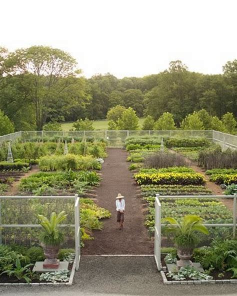 amazing ideas for growing a successful vegetable garden