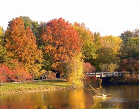 fall colors at toledo botanical gardens picture of