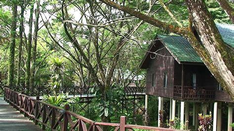 malaysia borneo sarawak royal mulu resort youtube