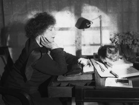 Co Latte cats in the 20th century cats in literature colette the great cat