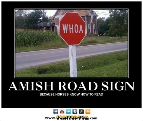 seymore butts swings amish stop sign woah because horses know how to read