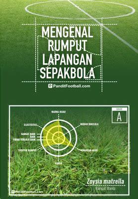 Bibit Rumput Untuk Lapangan Bola 3 jenis rumput untuk lapangan bola jual rumput taman dan