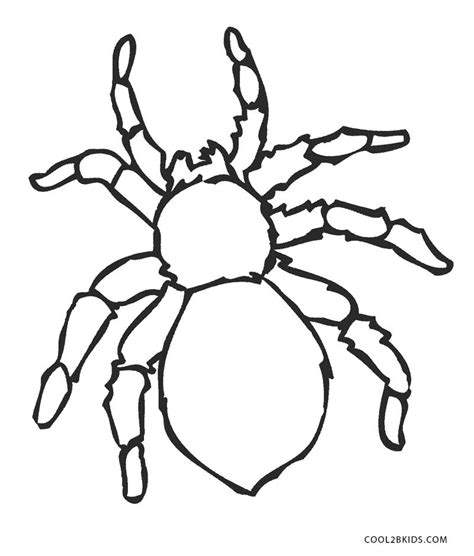 spider coloring pages free printable spider coloring pages for cool2bkids