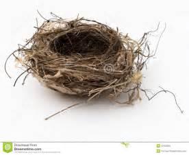 Peacock Armchair Empty Bird Nest Stock Photo Image 32100050