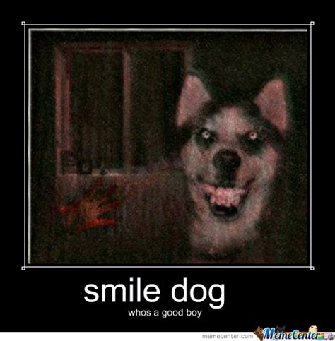 Smile Funny Meme - smile dog memes image memes at relatably com