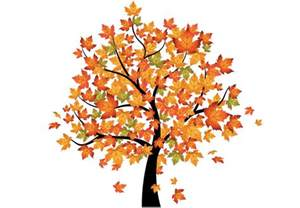 Vinyl Wall Murals maple tree in autumn wall decal beautiful fall decoration