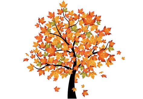 Latest Home Interior Design Photos by Maple Tree In Autumn Wall Decal Beautiful Fall Decoration
