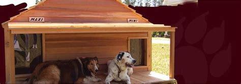 dog house la decorare il giardino con la cuccia da esterno del vostro cane