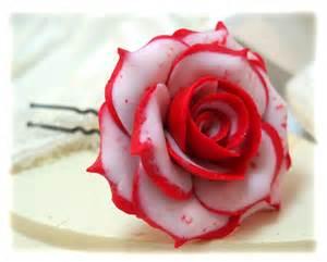White rose red tip white rose red tip http strandedtreasures com