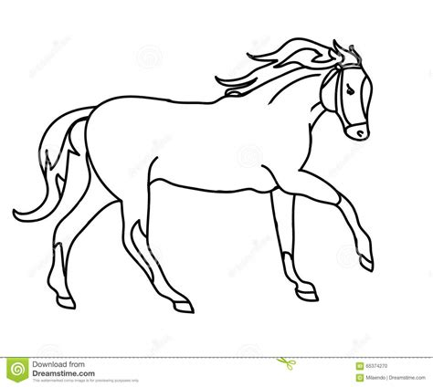 Sketch Outline by The Silhouette Of A Gallop Black Outline Stock Vector Image 65374270