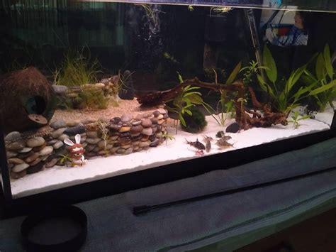 tuto r 233 alisation d une terrasse pour aquarium