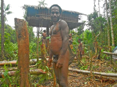 papua new guinea quot cannibals of papua quot across new guinea indonesia