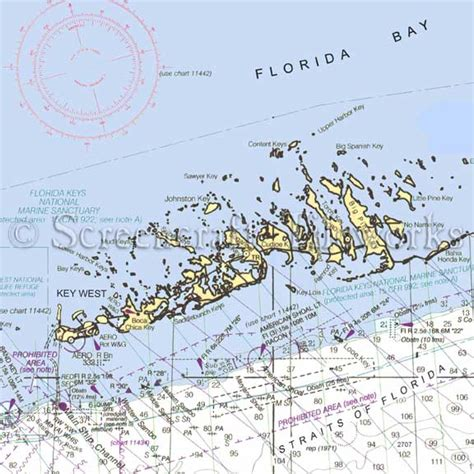 Coastal Style Area Rugs Florida Key West Amp Lower Keys Nautical Chart Decor